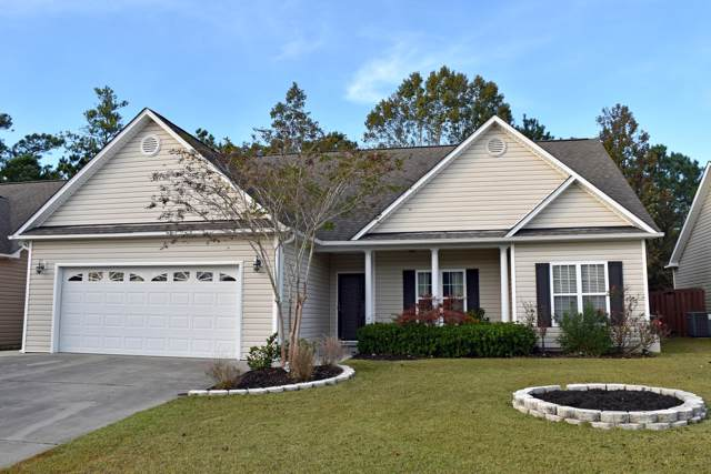 419 Vallie Lane, Wilmington, NC 28412 (MLS #100193019) :: The Chris Luther Team