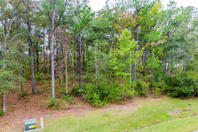 247 Mimosa Drive, Sneads Ferry, NC 28460 (MLS #100193810) :: RE/MAX Essential