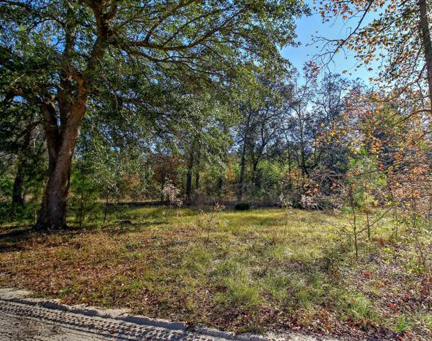 242 Tanglewood Drive, Whiteville, NC 28472 (MLS #100194310) :: SC Beach Real Estate