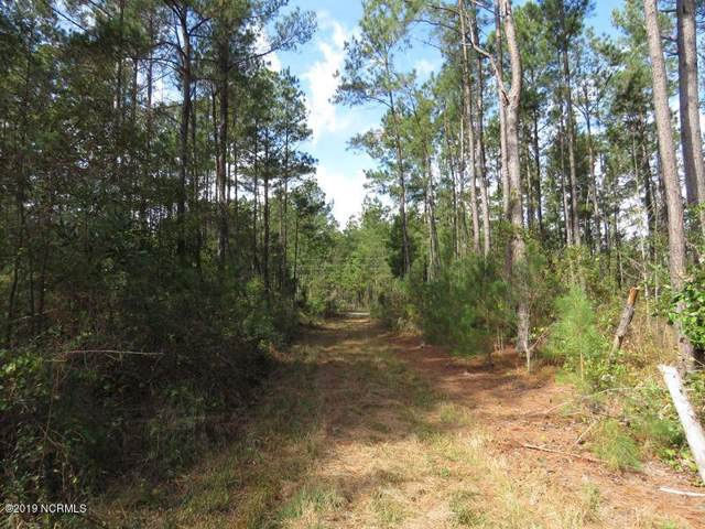 0 Sarah Peterson Road, Council, NC 28434 (MLS #100194328) :: Berkshire Hathaway HomeServices Myrtle Beach Real Estate