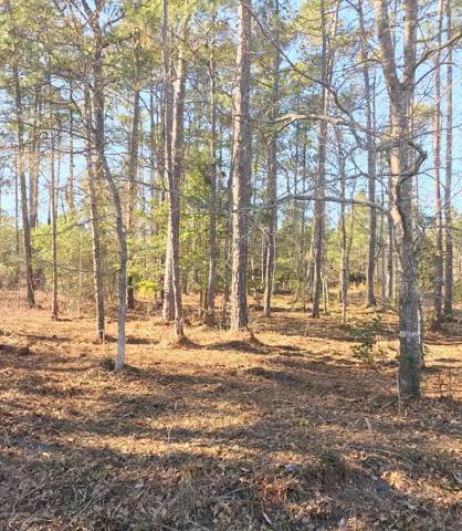 Lot 458 Country Club Drive, Hampstead, NC 28443 (MLS #100194632) :: The Keith Beatty Team