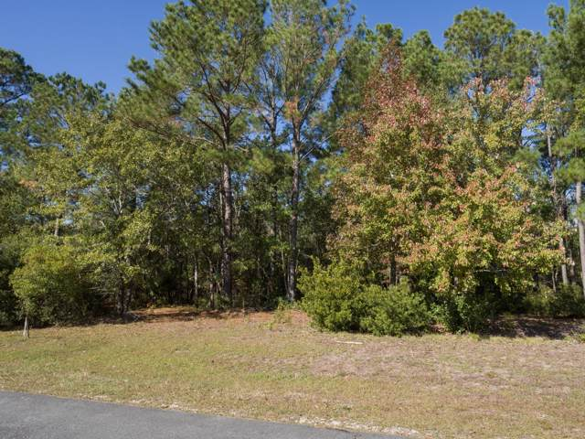 205 Marina Wynd Way, Sneads Ferry, NC 28460 (MLS #100194641) :: RE/MAX Essential