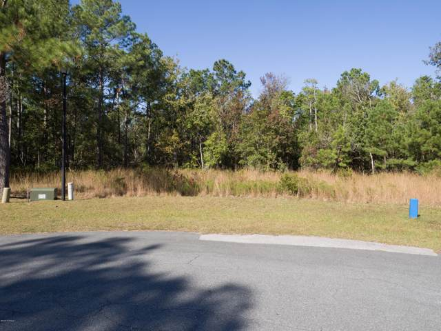 207 Marina Wynd Way, Sneads Ferry, NC 28460 (MLS #100194644) :: RE/MAX Essential