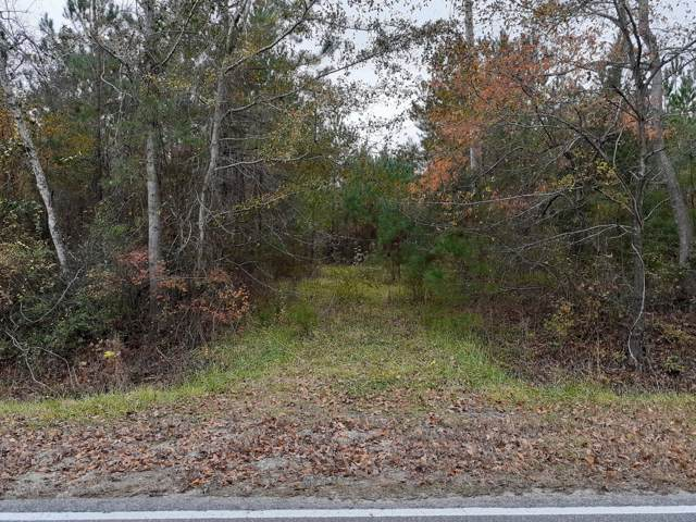 5495 Goose Neck Road NE, Riegelwood, NC 28456 (MLS #100194884) :: Vance Young and Associates