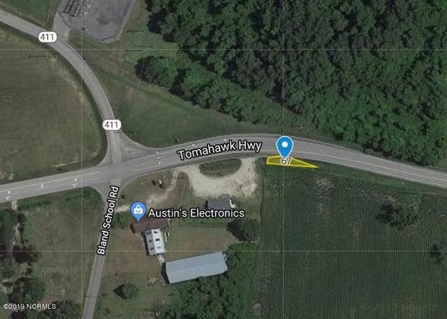 1301 Tomahawk Highway, Harrells, NC 28444 (MLS #100195205) :: CENTURY 21 Sweyer & Associates