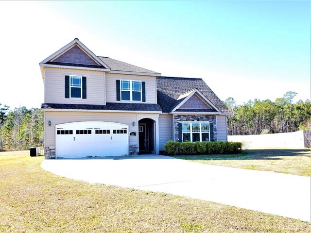 144 Palo Alto Park Drive, Maysville, NC 28555 (MLS #100195652) :: Berkshire Hathaway HomeServices Prime Properties
