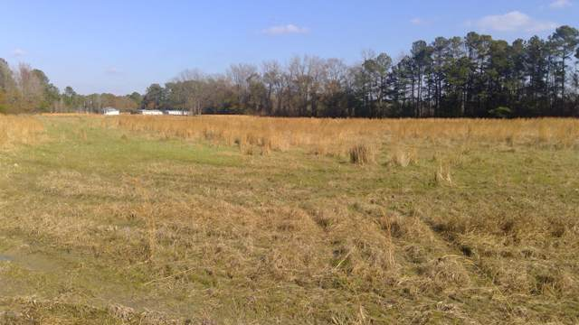 Lot4 Esterville Road, Elizabethtown, NC 28337 (MLS #100195690) :: The Keith Beatty Team