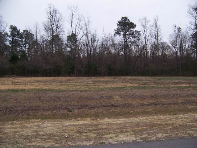 1.52 George Ii Highway Highway, Southport, NC 28461 (MLS #100196089) :: The Chris Luther Team