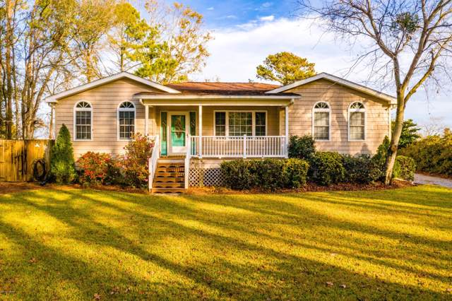 221 Salty Shores Rd Road, Newport, NC 28570 (MLS #100196340) :: RE/MAX Elite Realty Group