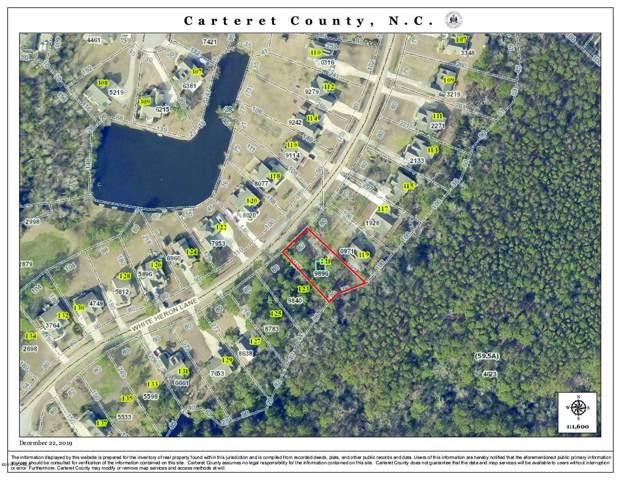 121 White Heron Lane, Swansboro, NC 28584 (MLS #100197238) :: Vance Young and Associates