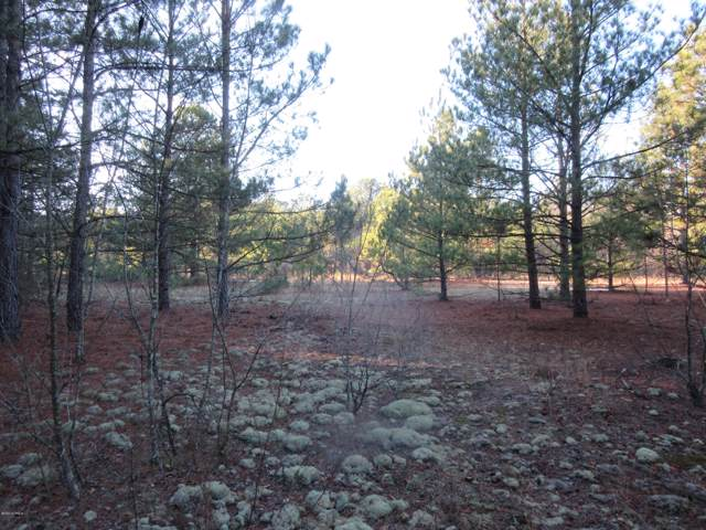 Lot # 0 Indian Reservation Road Road, Wagram, NC 28396 (MLS #100197803) :: The Keith Beatty Team