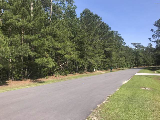132 Little Creek Drive, Havelock, NC 28532 (MLS #100198491) :: Castro Real Estate Team