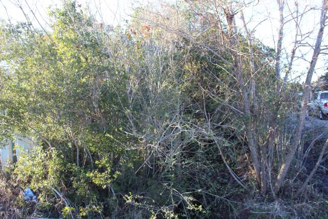 Tbd Eagle Road, Newport, NC 28570 (MLS #100198677) :: The Chris Luther Team