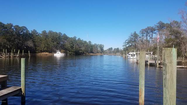 232 Jonaquins Drive, Beaufort, NC 28516 (MLS #100198764) :: Frost Real Estate Team
