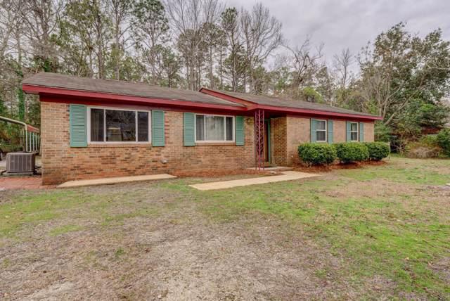 101 Antoinette Drive, Wilmington, NC 28412 (MLS #100199346) :: RE/MAX Elite Realty Group