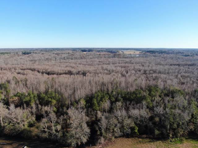 Lot 1 N.C. 904 Road, Fairmont, NC 28340 (MLS #100199680) :: The Keith Beatty Team