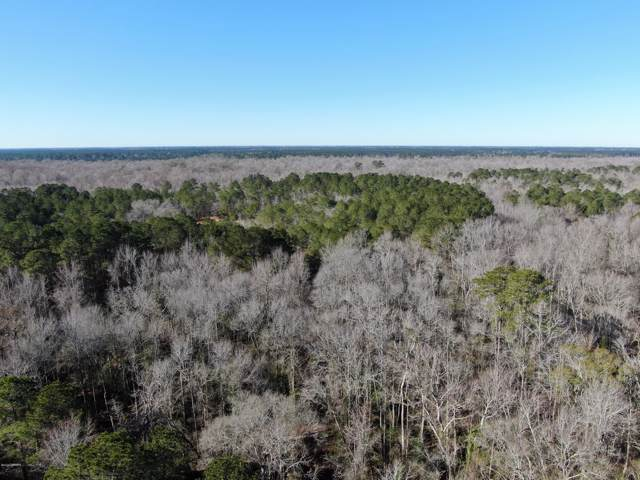 Lot 1 Off Triple T Drive, Butters, NC 28320 (MLS #100199701) :: The Keith Beatty Team