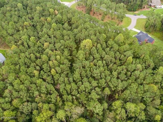 46 Sassafrass Loop, Arapahoe, NC 28510 (MLS #100199905) :: The Tingen Team- Berkshire Hathaway HomeServices Prime Properties