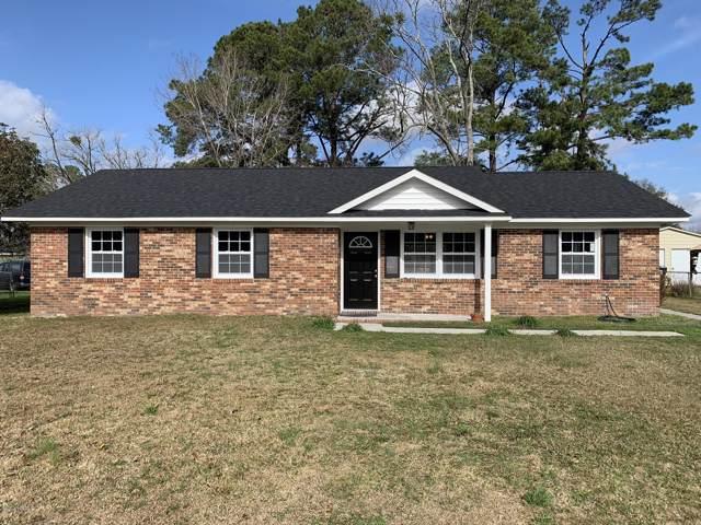 205 Old Mill Road, Castle Hayne, NC 28429 (MLS #100199996) :: RE/MAX Elite Realty Group