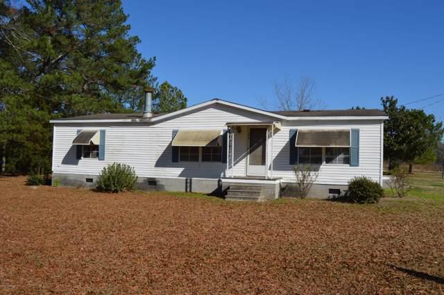 179 Eakins Drive, Willard, NC 28478 (MLS #100200136) :: CENTURY 21 Sweyer & Associates