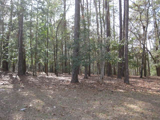 2114 Arnold Palmer Drive, Shallotte, NC 28470 (MLS #100200414) :: Vance Young and Associates