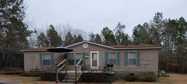 22180 Polar Bridge Road, Laurel Hill, NC 28351 (MLS #100200513) :: RE/MAX Elite Realty Group