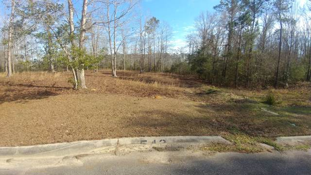 542 Sanctuary Point SW, Supply, NC 28462 (MLS #100200627) :: Thirty 4 North Properties Group