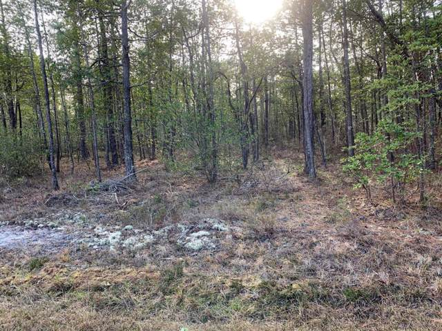 Lot 262 Reeves Road, Boiling Spring Lakes, NC 28461 (MLS #100200831) :: RE/MAX Elite Realty Group