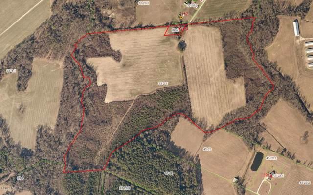 134 Horne Lane, Richlands, NC 28574 (MLS #100201461) :: RE/MAX Essential