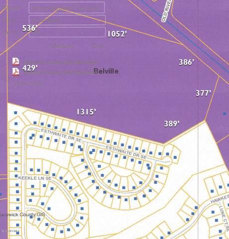 0 River Road, Belville, NC 28451 (MLS #100203318) :: RE/MAX Elite Realty Group