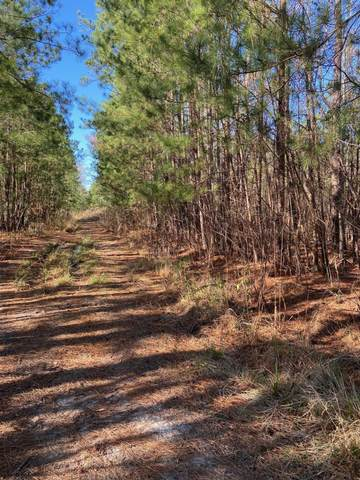 Tract 2 North Bend Road, Wilmington, NC 28411 (MLS #100203756) :: RE/MAX Essential