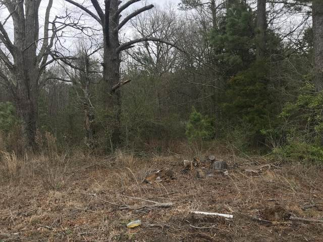 13792 Nc Highway 33, Whitakers, NC 27891 (MLS #100204059) :: RE/MAX Elite Realty Group