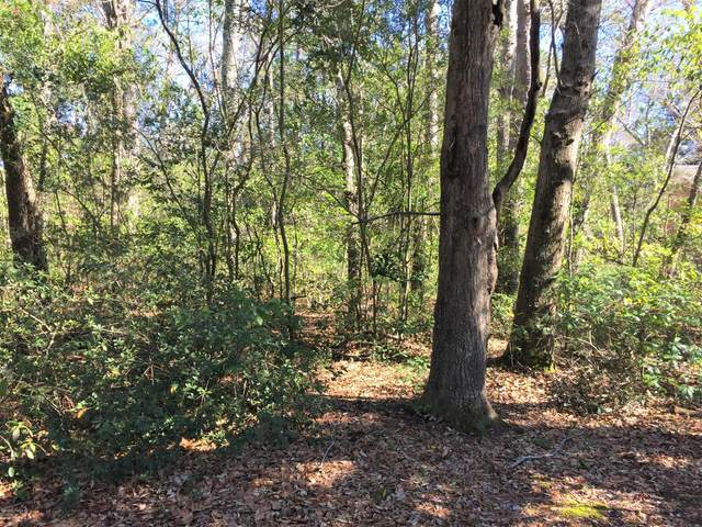 331 Pine Valley Drive, Wilmington, NC 28412 (MLS #100204926) :: Vance Young and Associates