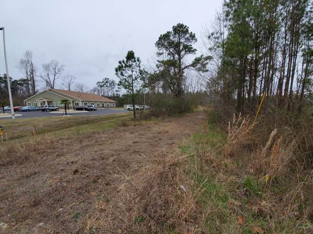 4319 Old Ocean Highway, Bolivia, NC 28422 (MLS #100205187) :: The Keith Beatty Team