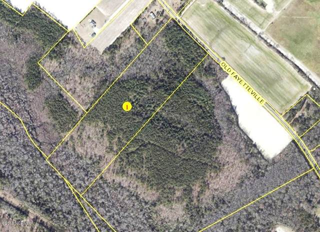 29.6 Acres Old Fayetteville Road, Garland, NC 28441 (MLS #100205292) :: The Tingen Team- Berkshire Hathaway HomeServices Prime Properties