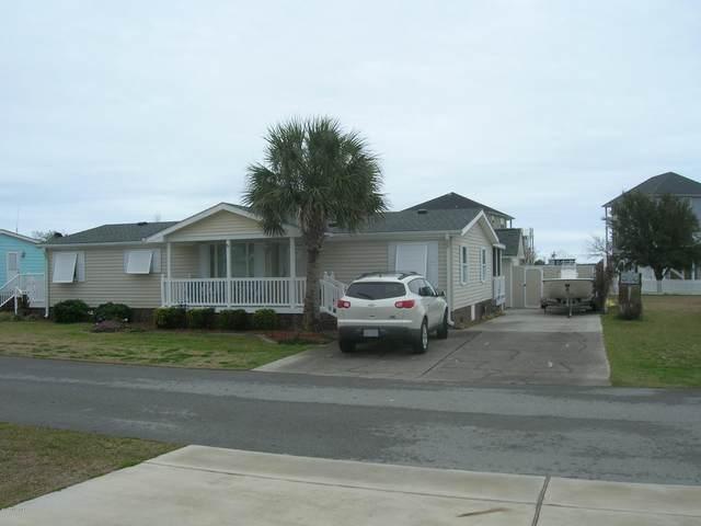 219 Blue Goose Lane, Newport, NC 28570 (MLS #100205308) :: David Cummings Real Estate Team