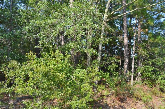 102 Mohawk Trail, Wilmington, NC 28409 (MLS #100205330) :: The Keith Beatty Team