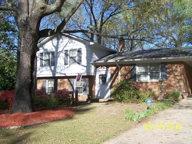12321 Purcell Road, Laurinburg, NC 28352 (MLS #100205519) :: The Keith Beatty Team