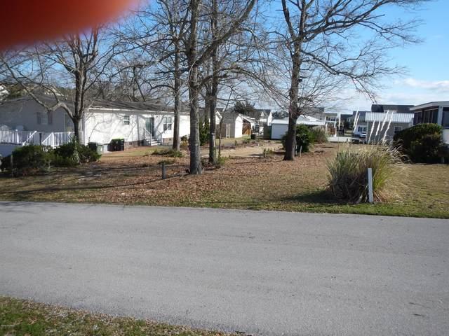 103 Snow Goose Lane, Newport, NC 28570 (MLS #100205660) :: The Tingen Team- Berkshire Hathaway HomeServices Prime Properties