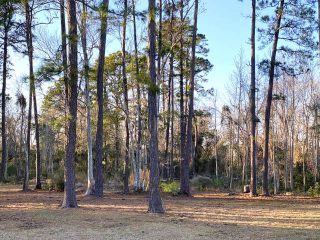 2423 Mapas Court SE, Southport, NC 28461 (MLS #100205754) :: The Tingen Team- Berkshire Hathaway HomeServices Prime Properties