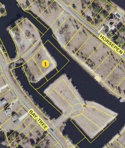 902 Land Bridge Crossing, Harrells, NC 28444 (MLS #100205846) :: Donna & Team New Bern
