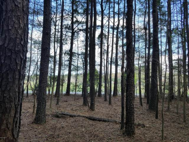 Lot 4 Herrings Chapel Road, Burgaw, NC 28425 (MLS #100206238) :: Vance Young and Associates