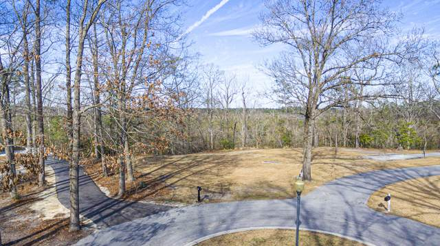 110 Genora Place, Jacksonville, NC 28540 (MLS #100206308) :: Liz Freeman Team