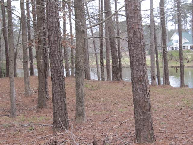 Lot #30 Tar Lane, Chocowinity, NC 27817 (MLS #100207697) :: Berkshire Hathaway HomeServices Prime Properties