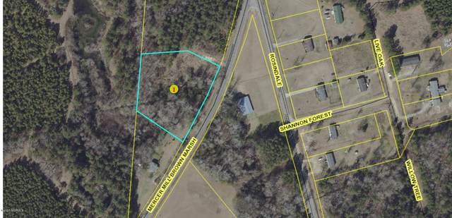4222 Mercer Mill Brown Marsh Road, Elizabethtown, NC 28337 (MLS #100209045) :: Lynda Haraway Group Real Estate