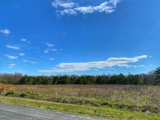 Tbd Houston Road, Trenton, NC 28585 (MLS #100209519) :: The Tingen Team- Berkshire Hathaway HomeServices Prime Properties