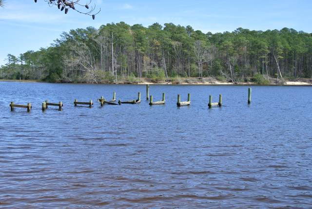 129 Sandy Huss Drive, Beaufort, NC 28516 (MLS #100209532) :: Thirty 4 North Properties Group