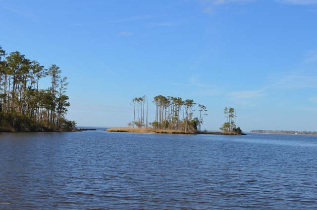 3019 Maritime Drive, Oriental, NC 28571 (MLS #100209673) :: Thirty 4 North Properties Group