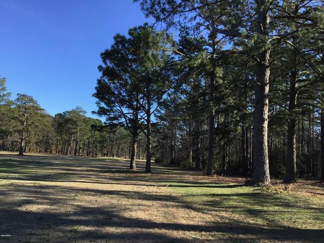 221 Country Club Drive W, Minnesott Beach, NC 28510 (MLS #100209706) :: Frost Real Estate Team