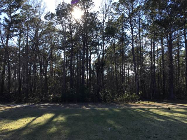301 Country Club Drive W, Minnesott Beach, NC 28510 (MLS #100209743) :: Castro Real Estate Team